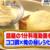 【めざましテレビ】1分料理動画が話題!俺のマル秘レシピも公開!【ココ調】