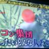 【タイキョの瞬間】河川敷で禁止行為を繰り返すラジコン飛行機集団がヤバすぎると話題!