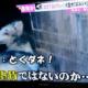 【とくダネ!】大型犬ボルゾイ虐待!呆れた理由に批判殺到!【漂白剤】