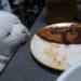 【炎上】ローソン店員ブチギレ退職届!ローソン氷川町南店の杜撰な経営実態が明らかに!